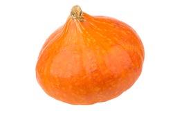 Single ripe orange pumpkin isolated on white background
