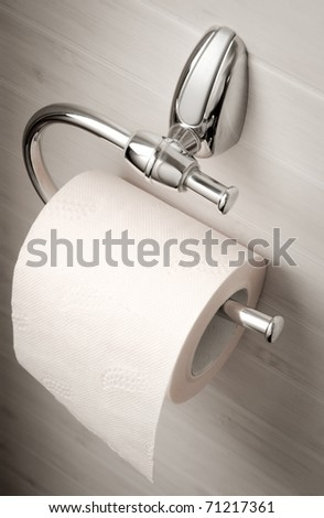 single roll of toilet paper on silver holder