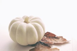 Single small white pumpkin with two autumn leaves on wooden board.