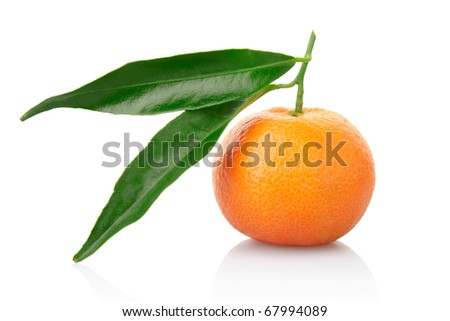 Single tangerine with leaf isolated on white, clipping path included