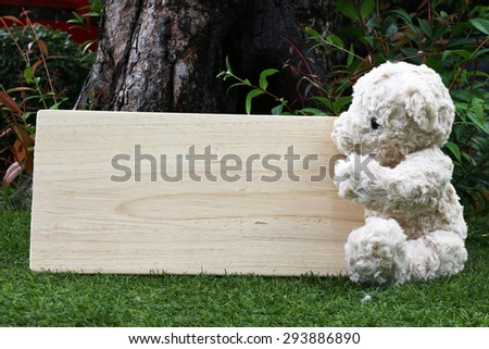 Single teddy bear on a grass and board wood for your text in the garden.