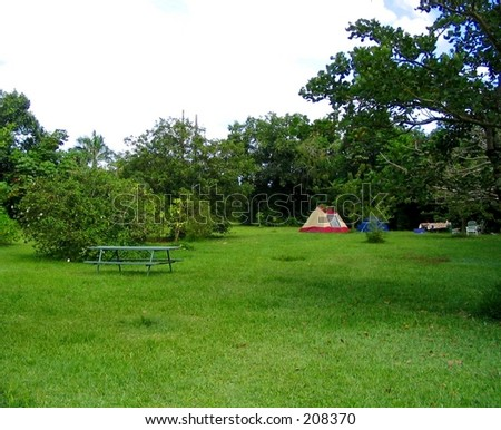 Single Tent At Peaceful Hawaii Campground, Hoomaluhia Botanical Gardens, On  Oahu.
