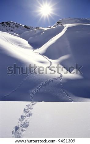 Single trail of footprints in deep snow, mountain area, backlite, vertical orientation