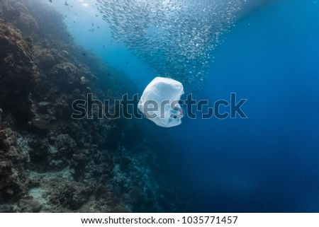 Single-use plastic and school of fish in a shallow reef. Plastic is a major contributor of pollution in the ocean.