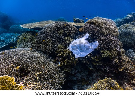 Single-use plastic floating above a healthy coral reef system