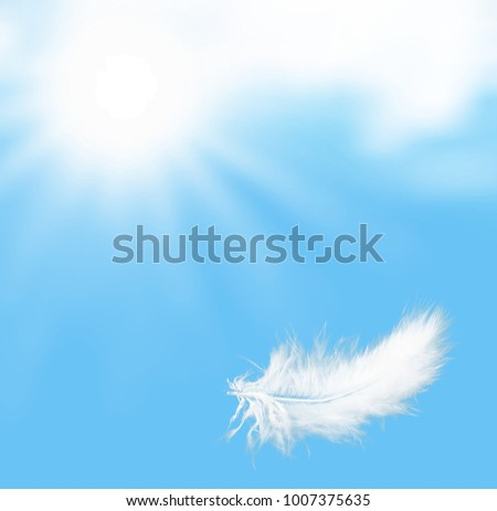 Single white feather falling