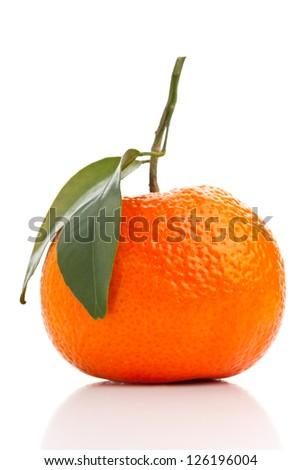 Single whole organic tangerine on white background