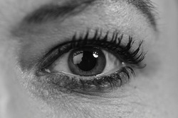 Single woman eye in black and white colors