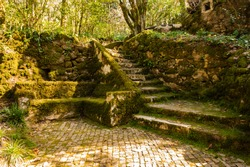 Sintra garden near the Pena palace with stone bench and stairs covered moss, Portugal