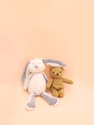 Sitting stuffed toys of a little white bunny and a brown vintage teddy bear, front view toys on pink background