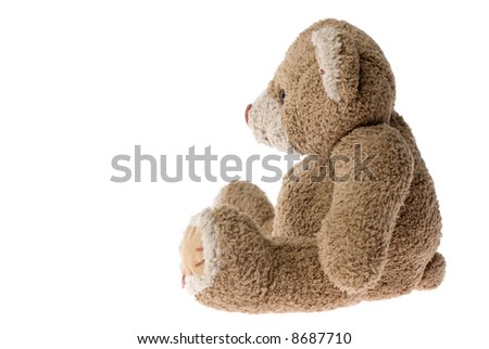 Sitting teddy bear - isolated on white.