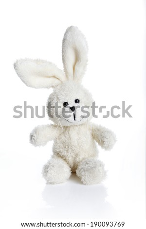 Sitting white stuffed bunny