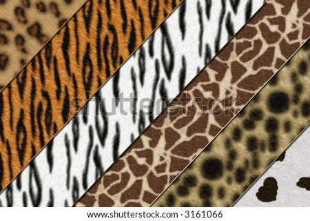 Six African wild animals skin background texture