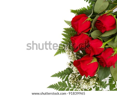 Six beautiful red roses isolated on a white background with room for your text