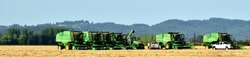 Six combines ready to begin the day of grass harvest in the Willamette Valley of Oregon