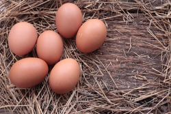 Six eggs on hay on old wooden,copy space