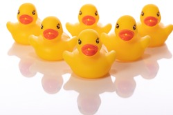 Six mini yellow rubber ducks isolated on white background. Group of ducklings lined up in wedge, bath baby toy, funny kids game. Conformism, communism, company, team, army concept. Copy text space
