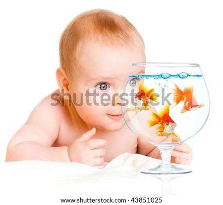 six-month-old baby and  goldfishs on a white background