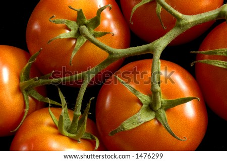 Six ripe vine tomatoes.