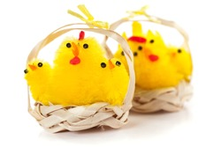 Six yellow chickens in straw baskets. Easter decoration. Studio photo isolated on white background.