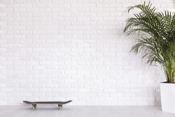 Skateboard and plant  on the background of brick white wall