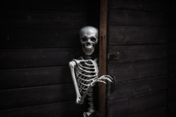 Skeleton answering the door of an old wooden home.