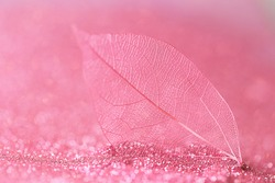 skeleton leaves.Skeletonized pink leaf close-up in pink glow glitter on a light pink  background.Wallpaper phone shining glitter. Beautiful nature background in pink tones with shining bokeh