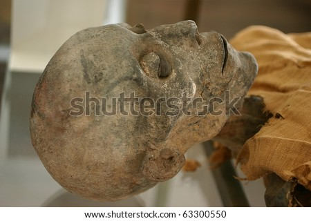 Skeleton mummy - stock photo