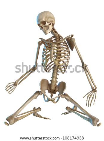 skeleton on the floor
