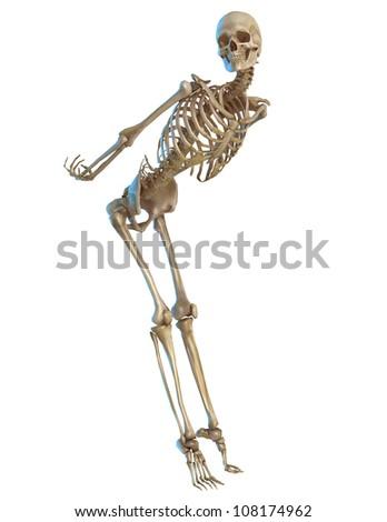 Pin Up Skeleton