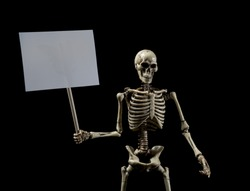Skeleton protestor with blank sign
