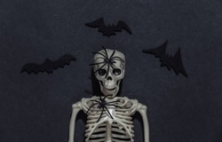Skeleton sculpt, spider and bats on a black dark background. Halloween theme. Top view