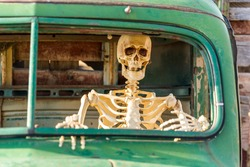 Skeleton sitting inside an old green truck close up view
