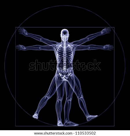 Skeleton X-Ray Vitruvian X-Ray of a male skeleton in a Leonardo da Vinci Vitruvian style pose Isolated on a black background