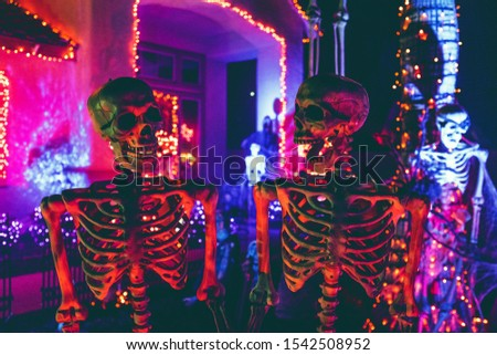 Skeletons, mysticism, fear, halloween, scary mystical stories