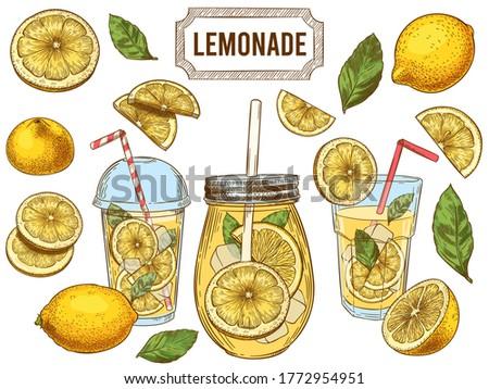 Sketch lemonade. Summer cold drinks, hand drawn yellow lemons slices and leaves. Glass of lemonade with ice  illustration set. Drink fruit lemonade graphic, juice and mint leaf