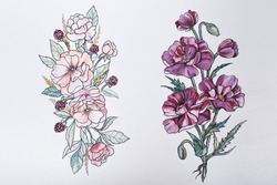 Sketch of beautiful flowers on a white background.