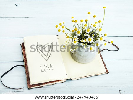 sketchbook with heart drawing and daisy flowers in a pot Love