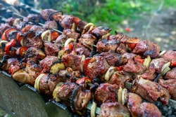 Skewers uncooked in nature on skewers in the open air. Shish kebab on the nature raw on the grill on a spit closeup. Shashlik shashlyk with onions and tomatoes