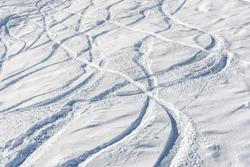 Ski and snowboard free ride tracks in powder snow