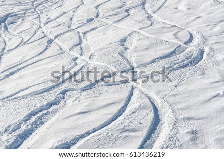 Ski and snowboard free ride tracks in powder snow