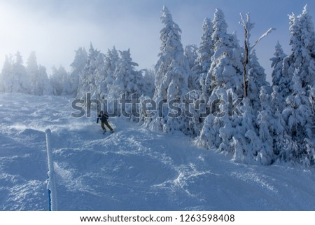 Ski and snowboarding in the snowy mountains of Vermont above inversion clouds. #1263598408
