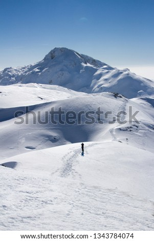 Ski mountainers ascending the mountain on touring skis in fine  weather. Thera are a paradise for tour skiing and snowshoeing. Slovenia, Julian Alps, Komna  #1343784074