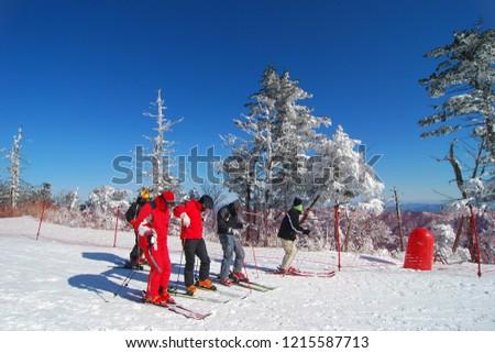 Ski Resort (Muju Resort) - Korea #1215587713