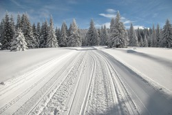 Ski slope and snowy road through spruce forest with snowmobile tracks in a bright winter day