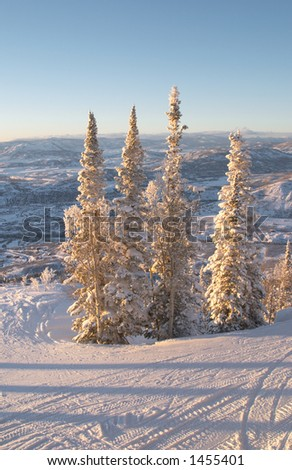 Ski slopes at winter, Steamboat ski resort, Colorado, United States