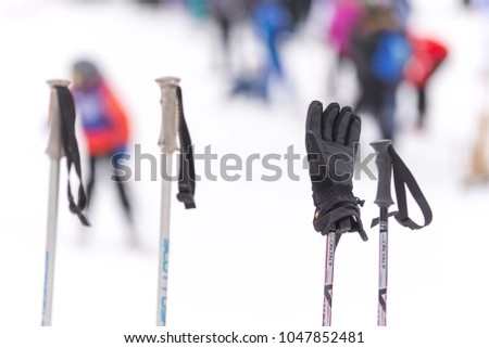 ski stick with ski gloves #1047852481