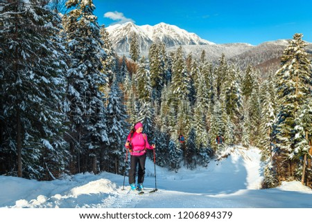 Ski touring in the snowy forest and Bucegi mountains in background. Active sporty woman reaching the top of mountain, Azuga ski slope, Transylvania, Romania, Europe #1206894379