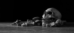 Skull and pile of bones put on wooden table and black background / Selective focus, Still Life Image and space for texts, and adjustment size and color for banner, cover, header