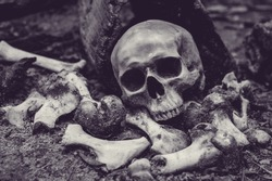 Skull and pile of bones with candle and candle light, selective focus, Still Life Image
